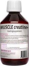 Muscle Creatine+, Vloeibare creatine serum