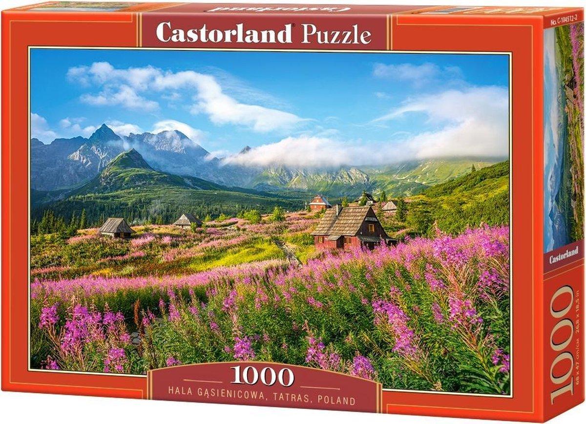 Hala G?sienicowa Tatras Poland - 1000 stukjes