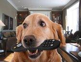 Hondenspeelgoed - Afstandbediening - Diervriendelijk Rubber - Kauw Bestendig - Spelen