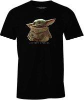 Star Wars Baby Yoda The Mandalorian Heren T-shirt L