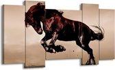 Canvas schilderij Paard | Bruin, Grijs, Zwart | 120x65 5Luik