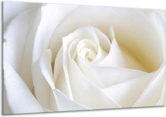Glasschilderij Roos | Wit | 120x70cm 1Luik | Foto print op Glas |  F000471