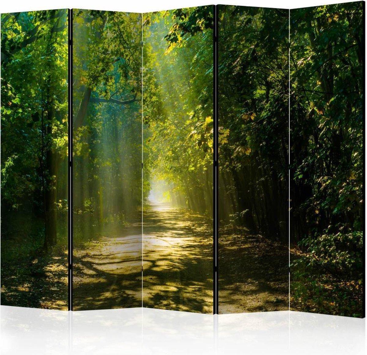 Vouwscherm - Zonlicht door de bomen, bos 225x172cm - karo-art