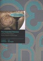 Boijmans Studies  -   The essential potness