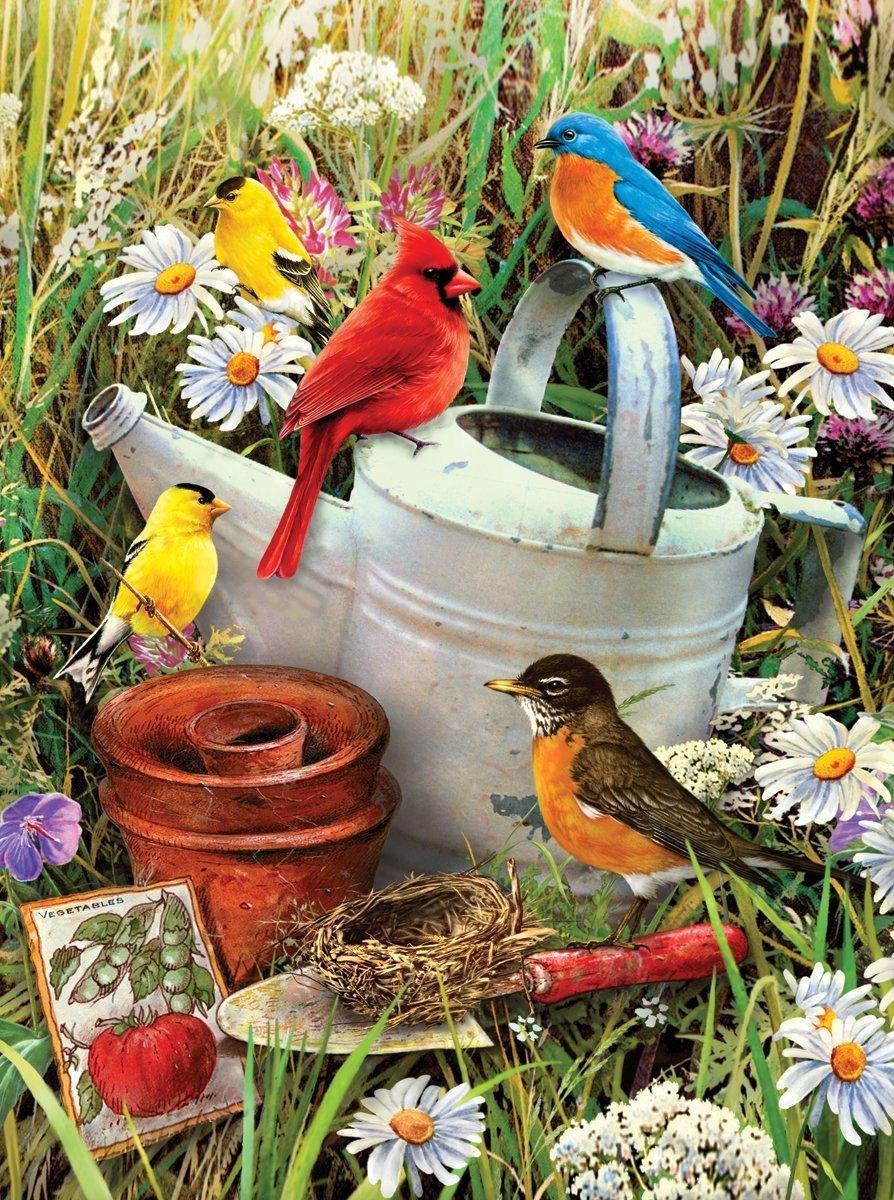 Schilderen op nummer - Paint by numbers - Dieren - Vogeltjes 22x30cm - Schilderen op nummer volwassenen - Paint by numbers volwassenen