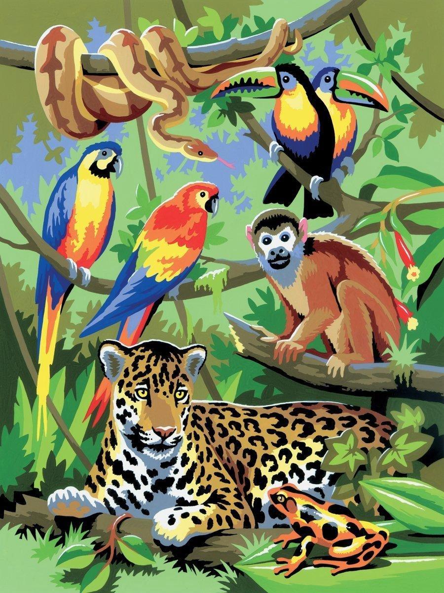 Schilderen op nummer - Paint by numbers - Dieren - Jungle 22x30cm - Schilderen op nummer volwassenen - Paint by numbers volwassenen