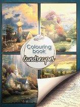 Kleurboek voor volwassenen Landschappen