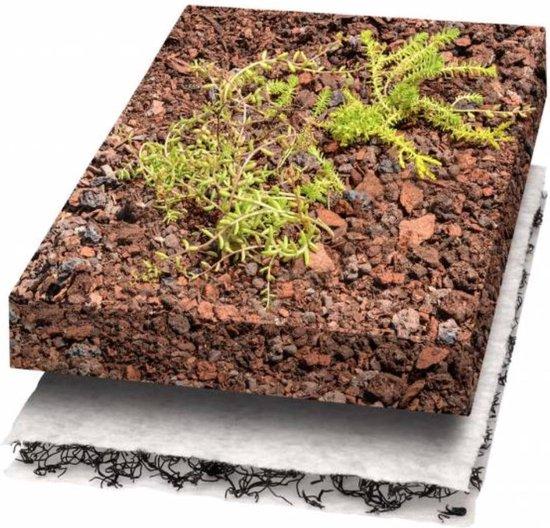 Gauris Groendak, compleet pakket inclusief 1000 g sedum voor 10m2 - Groen
