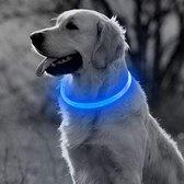 Blauwe LED Halsband voor honden Medium / Blauw verlichte halsband / Lichtgevende Halsband Hond / Diverse formaten beschikaar! Oplaadbaar via USB / USB Halsband LED