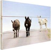 Ezels op de weg Hout 30x20 cm - klein - Foto print op Hout (Wanddecoratie)