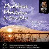 Mindfulness Med. Stress Relief