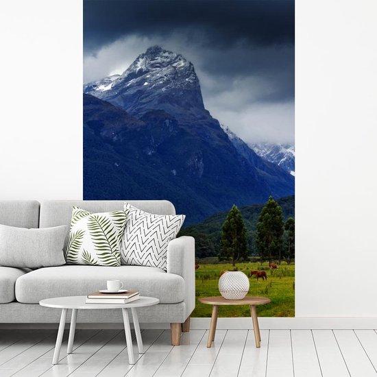 Fotobehang vinyl - Weide in het Nationaal park Mount Aspiring in Nieuw-Zeeland breedte 175 cm x hoogte 260 cm - Foto print op behang (in 7 formaten beschikbaar)