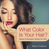 What Color Is Your Hair? Sense & Sensation Books for Kids