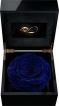 ROSES BY ROSES® - Luxe Video Flowerbox met HD scherm en 1 Longlife XXL Roos Donker Blauw - ''Een Persoonlijke Videoboodschap Uploaden'' voor Valentijnsdag, een Bruiloft, een Verjaardag, een Jubileum,  moederdag of vaderdag. Een uniek cadeau!