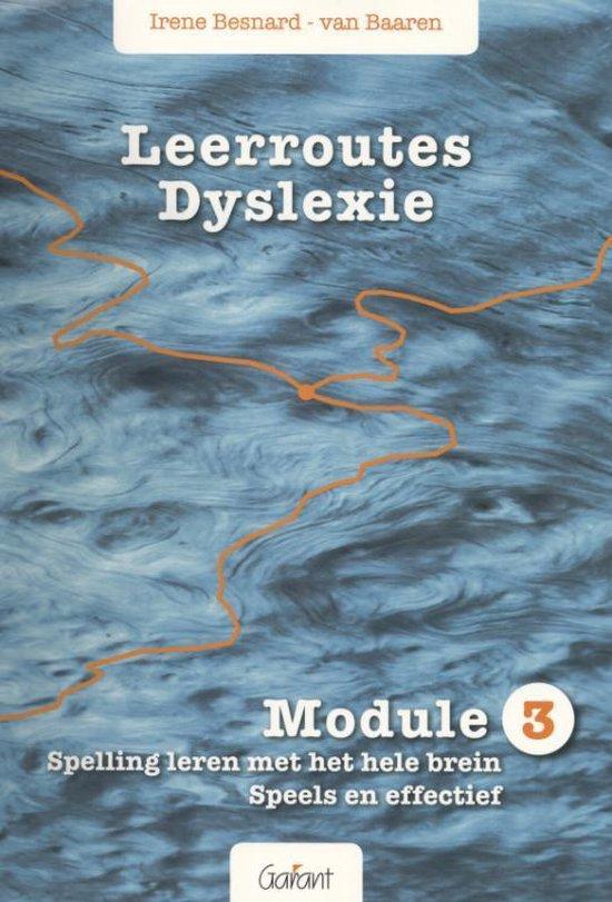 Leerroutes Dyslexie Module 3 spelling leren met het hele brein - Irene Besnard-Van Baaren   Fthsonline.com