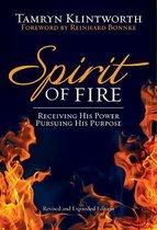 Spirit of Fire (eBook)