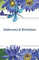 Addresses & Birthdays