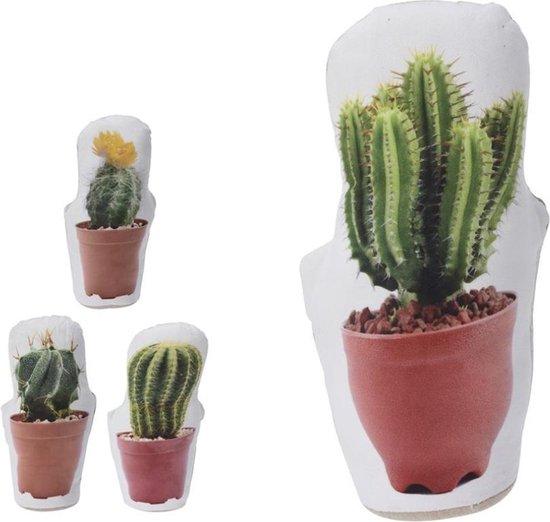 Wagon Trend Cactus Deurstop