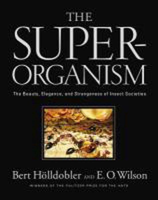 Boek cover The Superorganism van Bert Hoelldobler (Hardcover)