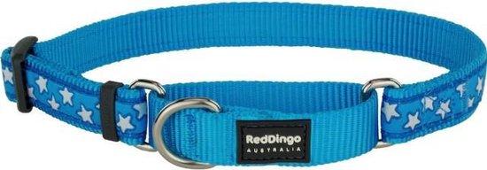 Red Dingo Martingale Correctie Halsband Hond 25mm 41-62cm MC-ST-TQ-25