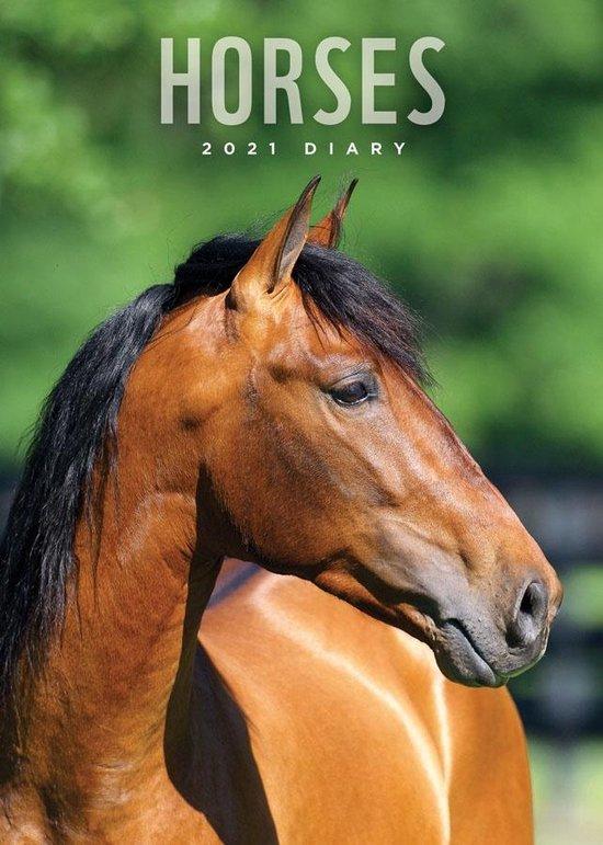 Paarden Agenda 2021