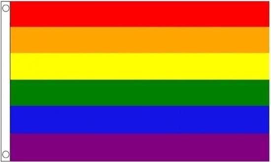 2x Regenboog LGBT vlag 90 x 150 cm - Pride vlaggen / feestversiering