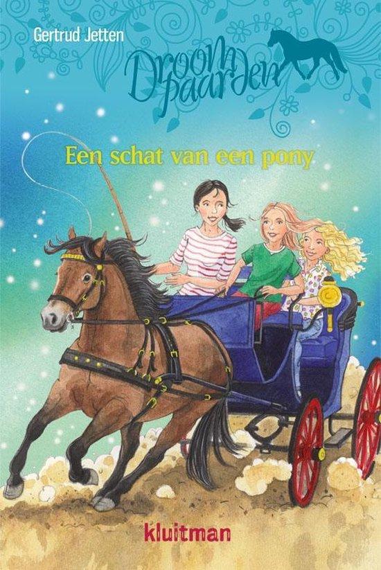 Droompaarden - Een schat van een pony - Gertrud Jetten |