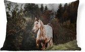 Sierkussens - Kussen - Appaloosa paard in de bergen - 60x40 cm - Kussen van...