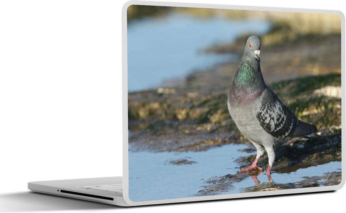 Laptop sticker - 13.3 inch - Rotsduif in het water