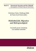 Multiethnizit t, Migration und Mehrsprachigkeit. Festschrift zum 65. Geburtstag von Adelheid Schumann