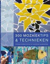 300 mozaiektips & technieken