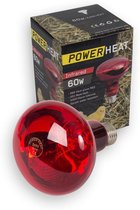 Warmtelamp 60 watt
