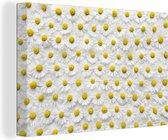 Canvas Schilderijen - Een bloemdessin van madeliefjes - 120x80 cm - Wanddecoratie