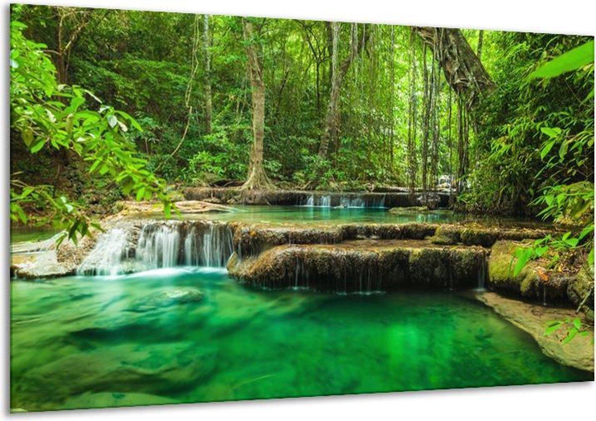 Glasschilderij Natuur   Groen   120x70cm 1Luik   Foto print op Glas    F005994