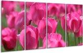 Glasschilderij Tulp | Roze, Groen | 160x80cm 4Luik | Foto print op Glas |  F002627