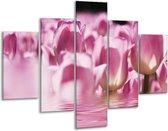 Glasschilderij Tulpen | Paars, Wit | 100x70cm 5Luik | Foto print op Glas |  F002923