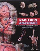 Papieren anatomie