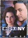 CSI: New York - Seizoen 7 (Deel 1)