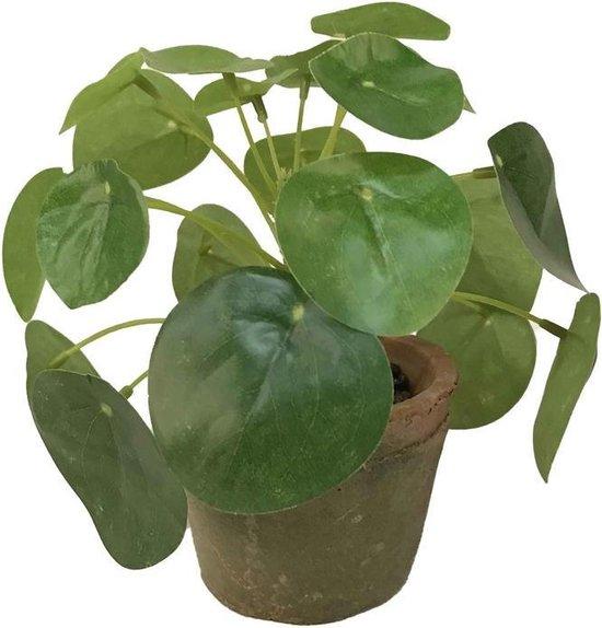 Kunstplant pannenkoeken plant groen in pot 13 cm - Kamerplant groen pilea