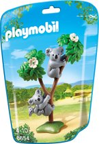 Koala's met baby