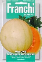 Fr Melone Rampicante Zuccherino - Meloen 91/7