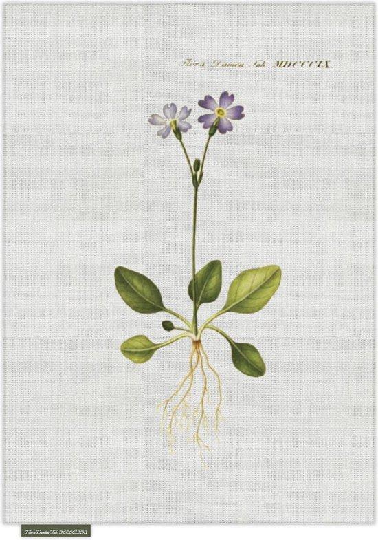 Theedoek - Violetje - Groen - 50 x 70 cm - Sodahl