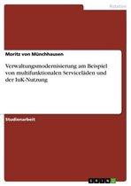 Verwaltungsmodernisierung am Beispiel von multifunktionalen Serviceläden und der IuK-Nutzung
