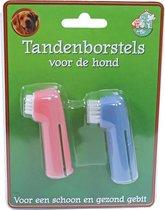 Kaart met 2 tandenborstels hond voor op je vinger