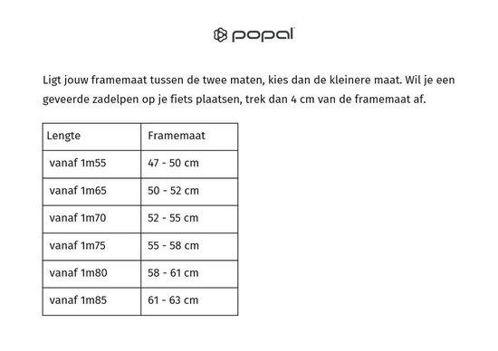 Popal City 6 Speed Fiets - Mannen - Grijs - 57 cm - Popal