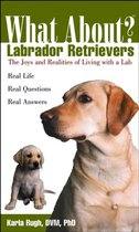 What about Labrador Retrievers?