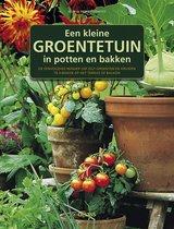 Een kleine groentetuin in potten en bakken