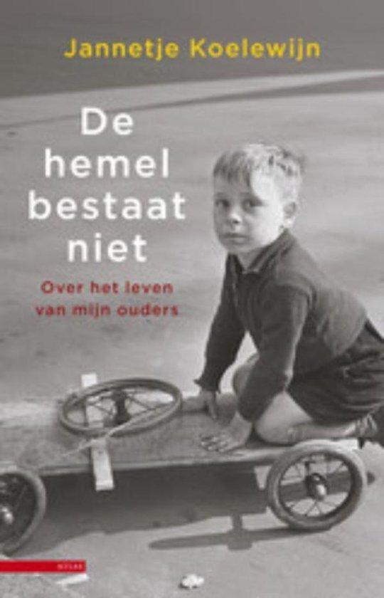 De hemel bestaat niet - Jannetje Koelewijn |