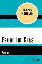 Boek cover Feuer im Gras van Hans Herlin