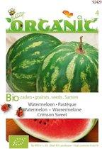 Buzzy® Organic Watermeloenen Crimson Sweet (BIO)